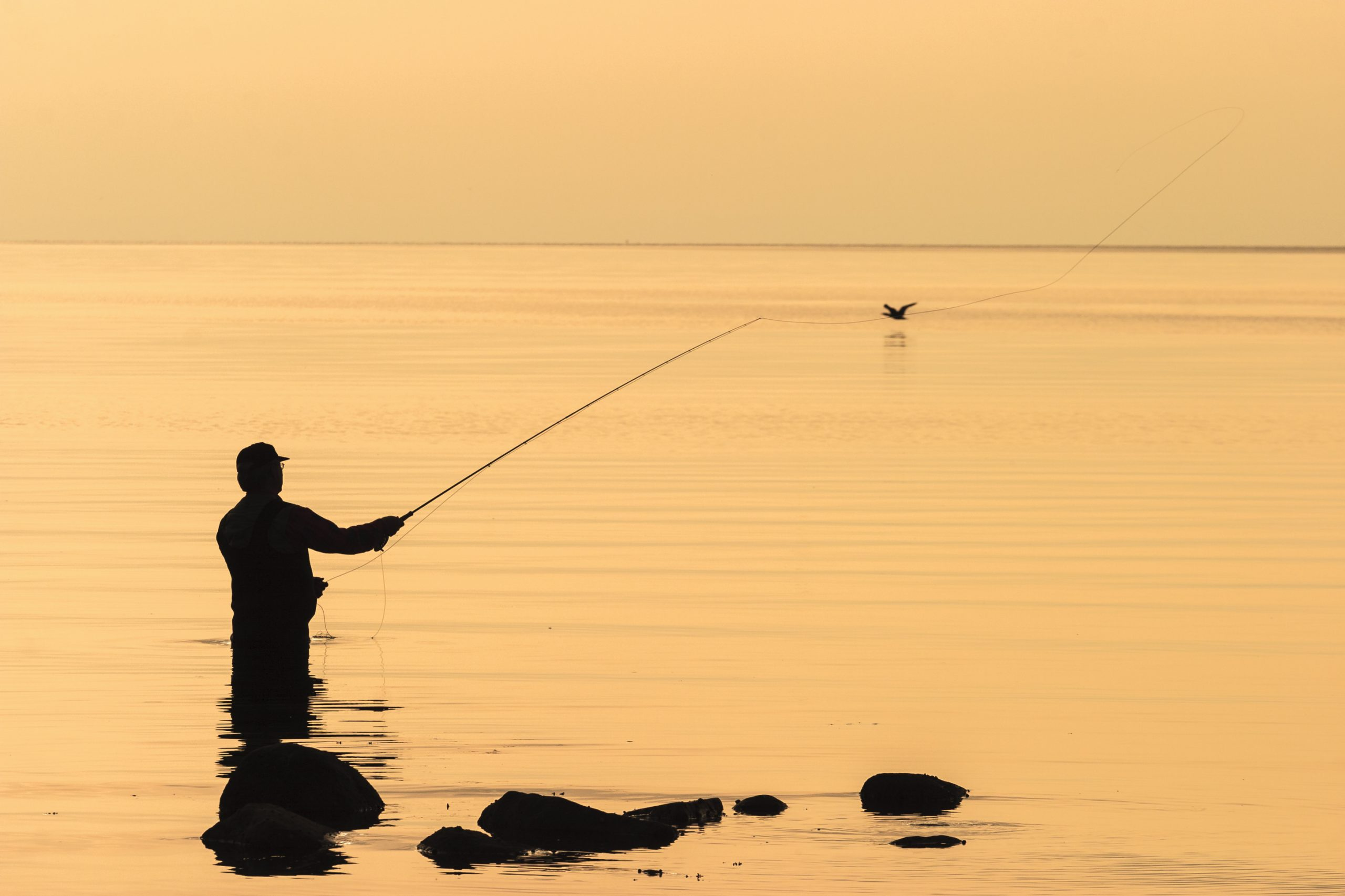 Interested In Fishing, Boating And Water? Comment Now On Proposed Changes To Regulations