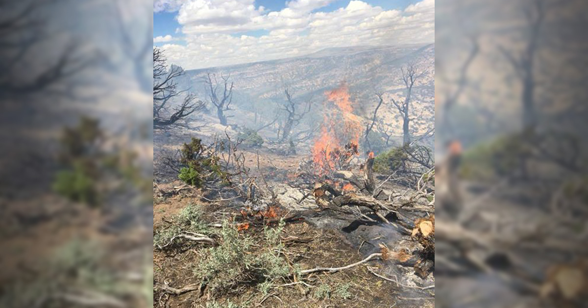 It's Ready to Burn: Fire Crews Tackle Three Blazes Over the Weekend, Prepping for More