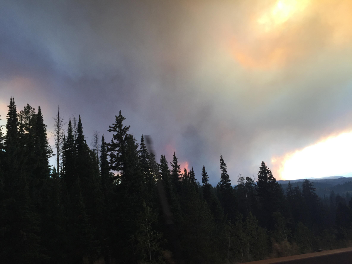 Suppression Costs for Roosevelt Fire Reach $22 Million