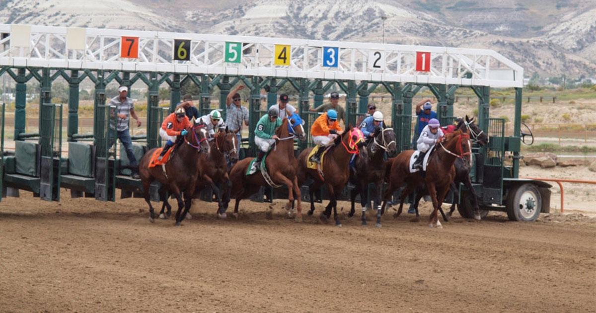 Discussions Begin Over Horse Racing Revenue