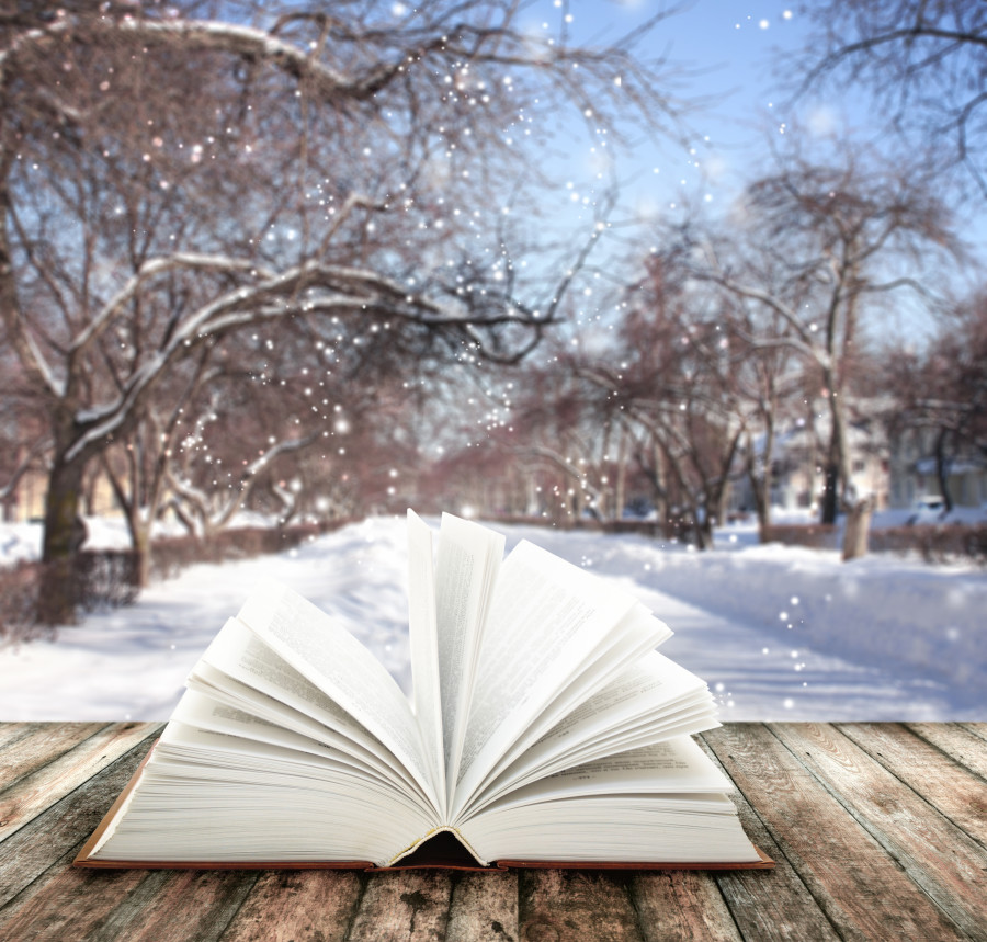 Snow is Falling, Books Are Calling