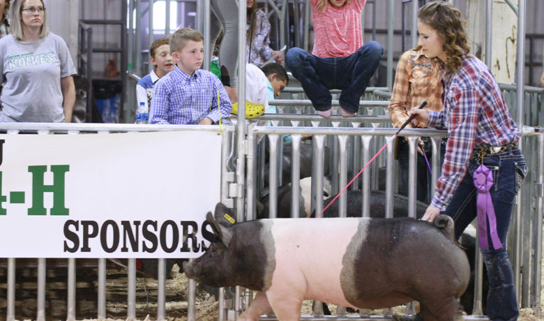 Sweetwater County Fair May Go Virtual for 4-H, FFA Participants