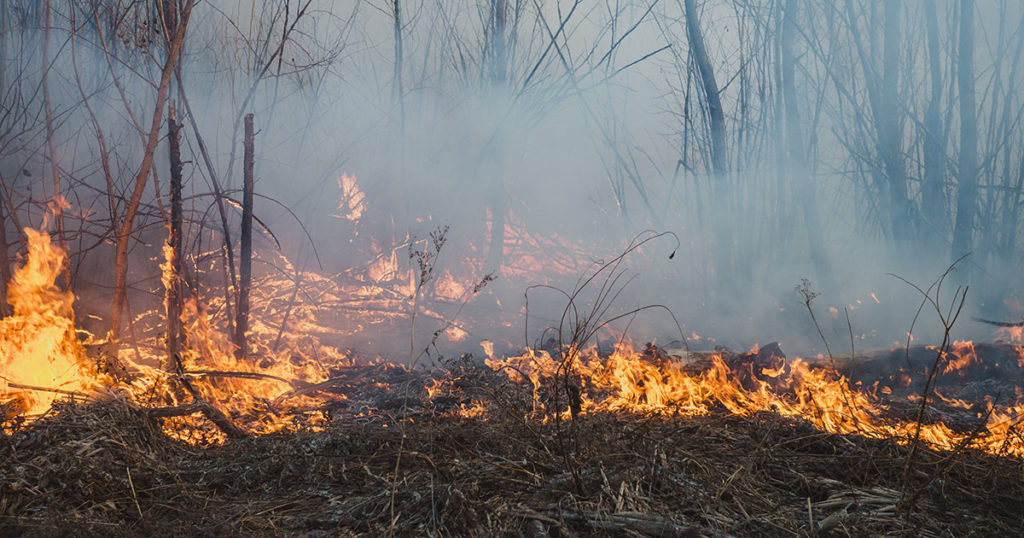 Sweetwater County Enters into Fire Restrictions