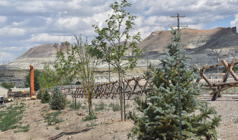 Green River Parks and Recreation Plant Trees Along East Teton Boulevard