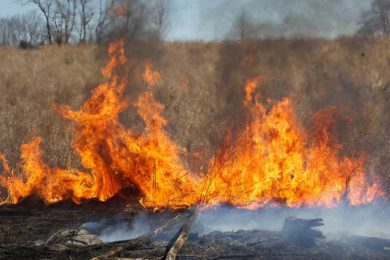 Elevated Fire Danger Warning Issued for Sweetwater County for Tuesday