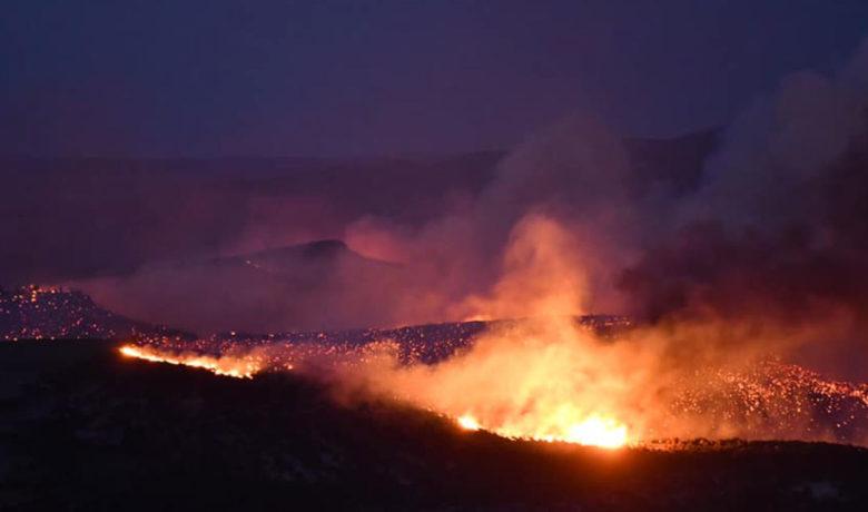 Minimal Containment on Richard Mountain Fire