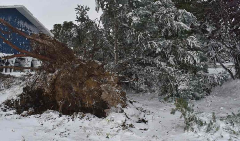 Record Breaking Temperatures, 80+ MPH Winds Hit Sweetwater County