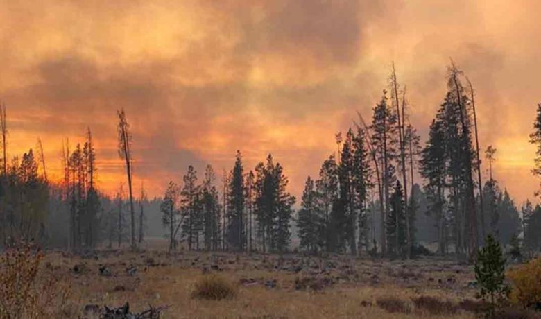 Some Land Owners Can Return to Property near Mullen Fire