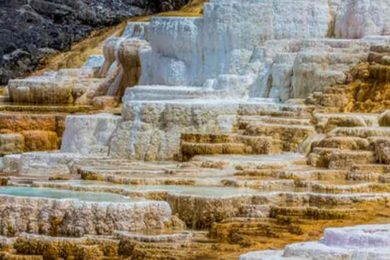 Yellowstone's Tourism Contributes About $560 Million to Nearby Communities