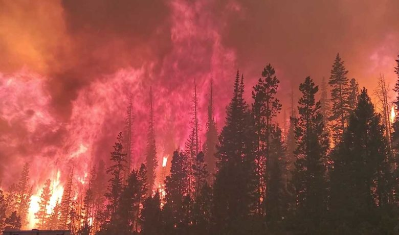 Cold Front Expected to Moderate Mullen Fire Growth