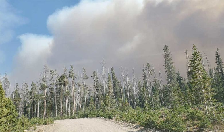 Mullen Fire Now 81 Percent Contained