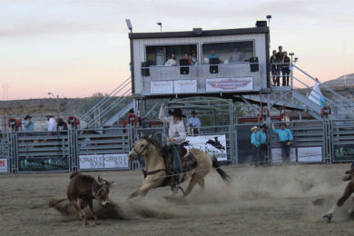 Saddle Up for the 33rd Annual Overland Stage Stampede Rodeo