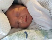 Birth Announcement: Theodore James Royal
