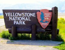 Yellowstone Sees 50% Visitation Increase Over 2019 Memorial Day Weekend