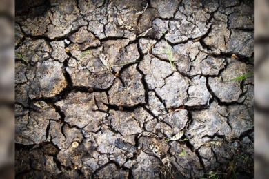 New Wyoming Drought Resources Website Lauched