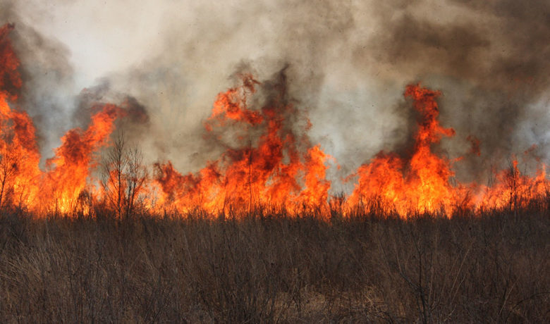 Sweetwater County Fire Warden Warns of Long and Dry Fire Season