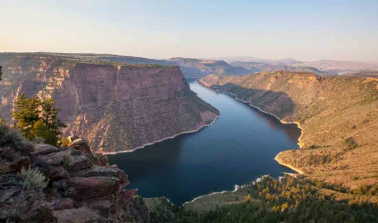 New Zealand Mudsnails, Curly Pondweed Discovered in Flaming Gorge