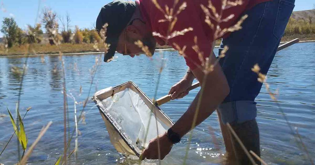 Wyoming Game and Fish Fight Back against Invasive Aquatic Species