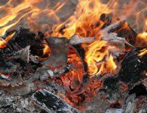 Slash Pile Burning to Occur in Bridger-Teton National Forest